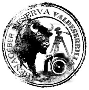 logo VALDESERRILLAS BENAGEBER